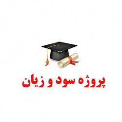 پروژه سود و زیان شرکت فولاد خوزستان
